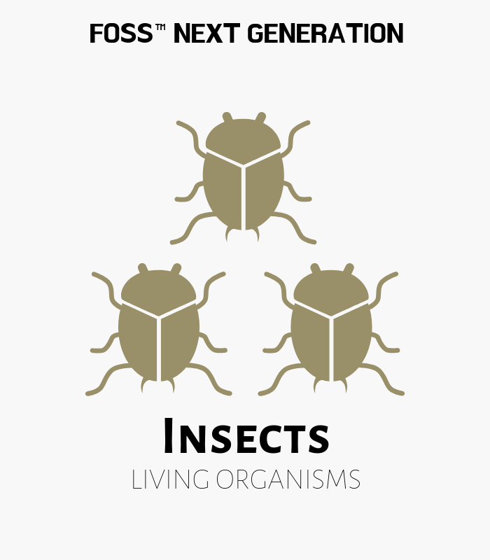 Insects Shipment #4 Replacement Set - FOSS Living Materials Kit