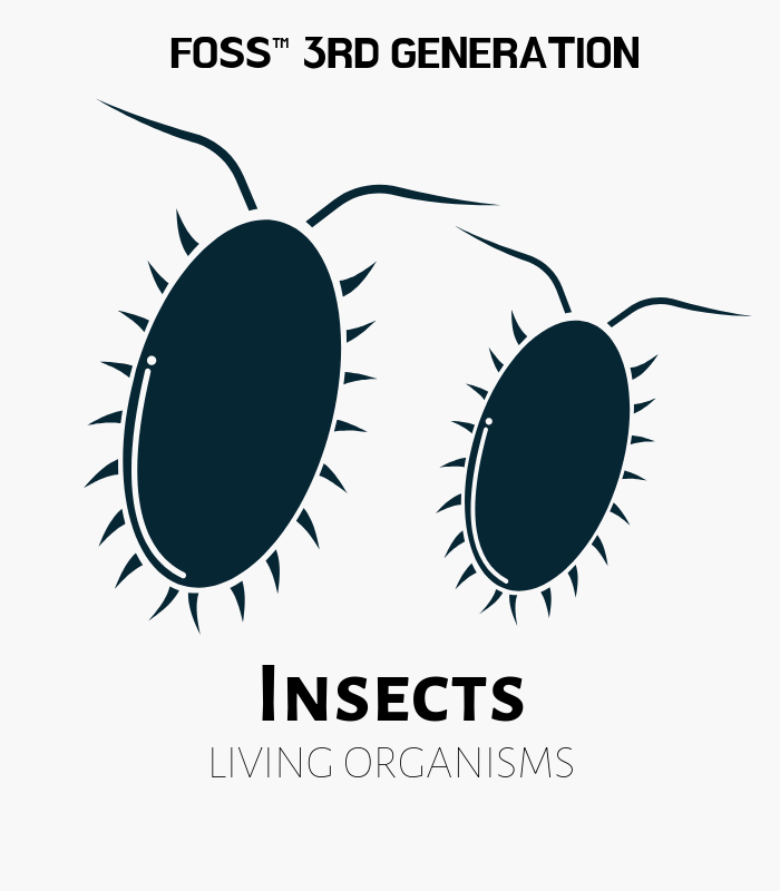 Insects FOSS 3rd Gen Kits