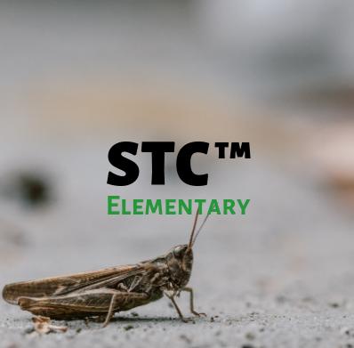 STC Elementary