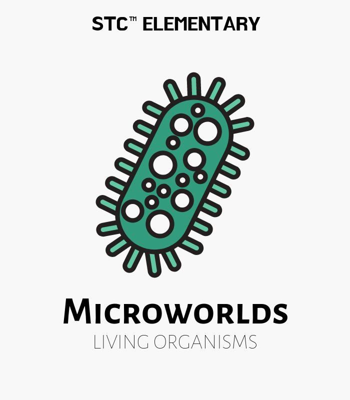 Micro Worlds