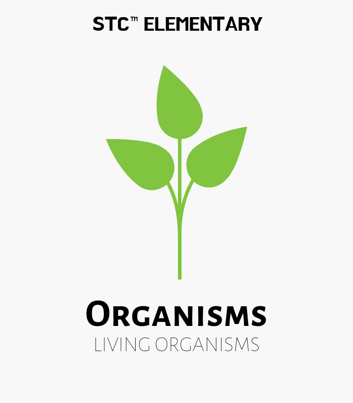 Organisms Shipment #3 Replacement Set - STC Living Materials Kit